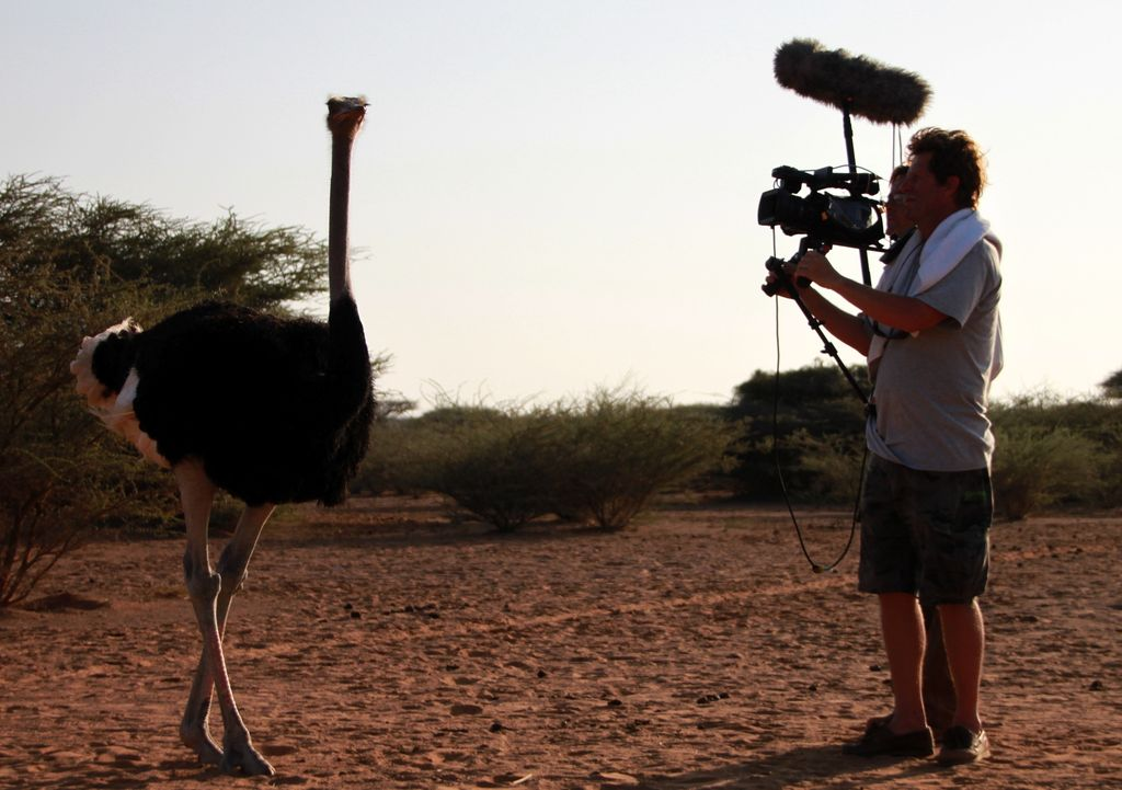 42 projets, 7000 heures de tournage