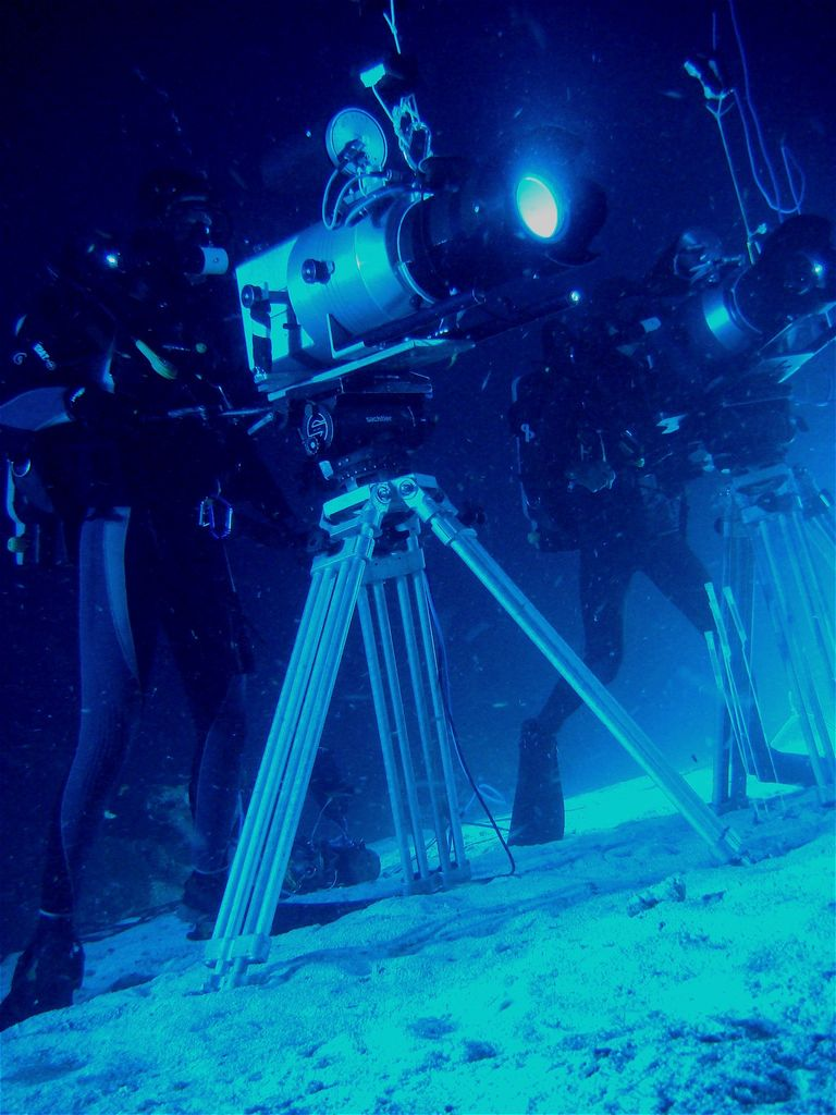 Formation à la prise de vue sous-marine