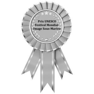 Prix unesco festival mondial de l'eau - Submarine film award