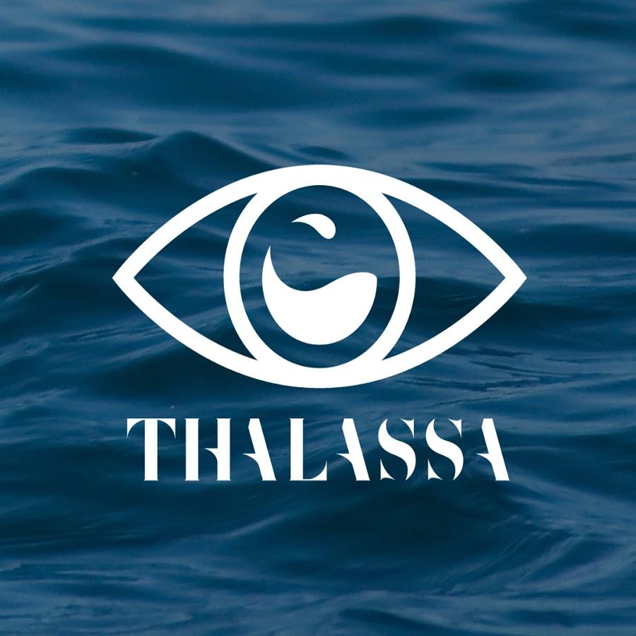 Réalisateur cadreur sous matin emission Thalassa