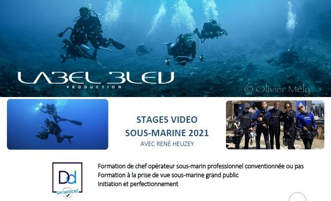 stages video sous marine